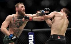 McGregor vs Nurmagomedov jeopardized the UFC