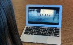 Bird Box: a compelling thriller about human nature