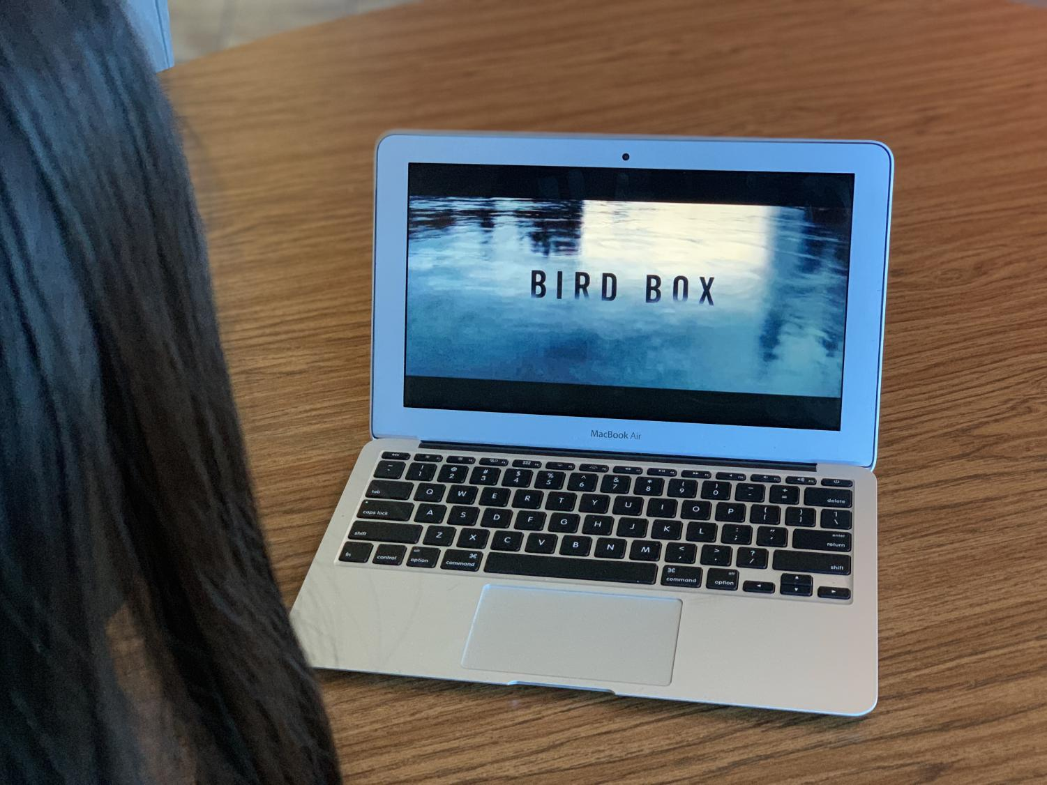 Bird Box captivated viewers with a thrilling pot and a chilling theme.