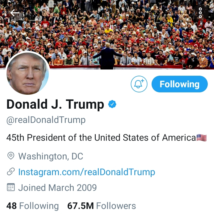 Trump's tweets polarizing but constitutionally protected