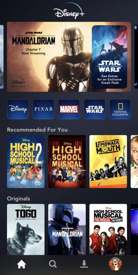 Disney+ contains over 7,500 shows and 500 movies to choose from.