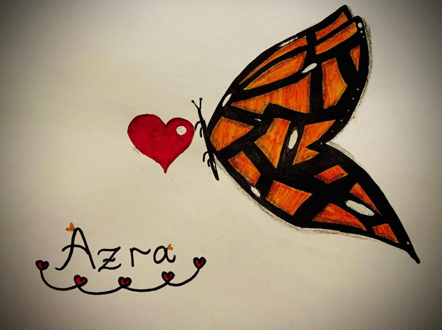 After she passed, Azra's lively and optimistic manner caused us to remember her as a butterfly.